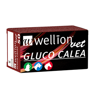 WellionVet GLUCO CALEA blood glucose test strips for dogs, cats and horses